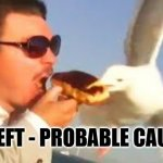 "swiping seagull | ""THEFT - PROBABLE CAUSE"" 
