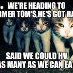 Wrong Neighboorhood Cats Meme | WE'RE HEADING TO FARMER TOM'S,HE'S GOT RATS SAID WE COULD HV AS MANY AS WE CAN EAT | image tagged in memes,wrong neighboorhood cats | made w/ Imgflip meme maker