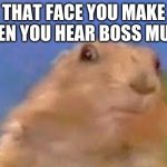Dramatic Chipmunk | THAT FACE YOU MAKE WHEN YOU HEAR BOSS MUSIC | image tagged in dramatic chipmunk | made w/ Imgflip meme maker