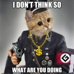 Grammar Nazi Cat | CATS SUCK I DON'T THINK SO WHAT ARE YOU DOING OUT OF YOUR CAGES MORTALS? | image tagged in grammar nazi cat | made w/ Imgflip meme maker