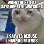 Crying cat | WHEN THE NETFLIX SAYS ARE STILL WATCHING I SAY YES BECUSE I HAVE NO FRIENDS | image tagged in crying cat | made w/ Imgflip meme maker