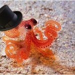 Octopus with top hat meme