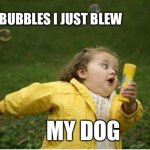 Doggos Do Be Afraid Of Buubles Though | THE BUBBLES I JUST BLEW MY DOG | image tagged in memes,chubby bubbles girl,dogs | made w/ Imgflip meme maker