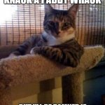 The Most Interesting Cat In The World Meme | I MAY KNICK KNACK A PADDY WHACK BUT I'LL BE DAMNED IF I'M ABOUT TO GIVE A DOG A BONE | image tagged in memes,the most interesting cat in the world | made w/ Imgflip meme maker