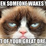 Oof lol | WHEN SOMEONE WAKES YOU OUT OF YOUR GREAT DREAM | image tagged in memes,grumpy cat not amused,grumpy cat,funny,dreams,reality | made w/ Imgflip meme maker
