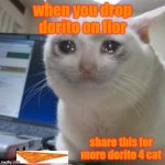 dorito go commit on the floor | when you drop dorito on flor share this for more dorito 4 cat | image tagged in sad,doritos,sad cat,like and share | made w/ Imgflip meme maker