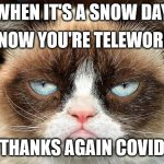 Loss of Snow Day | WHEN IT'S A SNOW DAY THANKS AGAIN COVID BUT NOW YOU'RE TELEWORKING | image tagged in memes,grumpy cat not amused,grumpy cat,haiku,telework | made w/ Imgflip meme maker