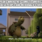 What is this place | EUROPEANS WHEN THEY COME TO AMERICA AND IT ISN'T OBESE PEOPLE AND MCDONALD'S EVERYWHERE | image tagged in what is this place | made w/ Imgflip meme maker