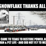 Snowflake Thanks Rescue Workers | SNOWFLAKE THANKS ALL WHO CAME TO TEXAS TO RESTORE POWER, ASSIST HUMAN & PET LIFE - AND DID NOT FLY TO MEXICO | image tagged in snowflake,texas,snow storm,ted cruz,thank you,rescue workers | made w/ Imgflip meme maker