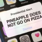 Pineapple Pizza | PINEAPPLE DOES NOT GO ON PIZZA | image tagged in president,pineapple,pizza,presidential alert,italian | made w/ Imgflip meme maker