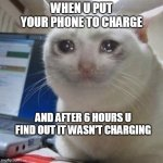 Crying cat | WHEN U PUT YOUR PHONE TO CHARGE AND AFTER 6 HOURS U FIND OUT IT WASN'T CHARGING | image tagged in crying cat | made w/ Imgflip meme maker