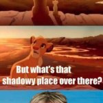 Simba Shadowy Place | WE OWN ALL THAT THE LIGHT TOUCHES KARENLAND | image tagged in memes,simba shadowy place | made w/ Imgflip meme maker