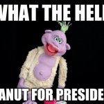 Peanut For President! | WHAT THE HELL PEANUT FOR PRESIDENT | image tagged in black background | made w/ Imgflip meme maker