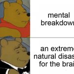 Tuxedo Winnie The Pooh | mental breakdown an extreme natural disaster for the brain | image tagged in memes,tuxedo winnie the pooh | made w/ Imgflip meme maker