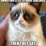 Grumpy Cat Meme | WHEN YOU REALISE HOW ANNOYING IT IS TO HAVE SIBLINGS THEN THEY SAY YOUR GETTING A BROTHER | image tagged in memes,grumpy cat | made w/ Imgflip meme maker