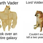 Meme Inspired by my dad. | Darth Vader Lord Voldemort Took over an entire galaxy Couldn't even kill a two year old. | image tagged in memes,buff doge vs cheems | made w/ Imgflip meme maker