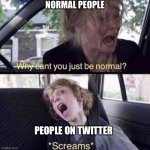 Why Can't You Just Be Normal | NORMAL PEOPLE PEOPLE ON TWITTER | image tagged in why can't you just be normal,twitter,cringe,2021,why cant you just be normal,normal | made w/ Imgflip meme maker