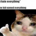 "Sad cat thumbs up | ""i hate everything"" the kid named everything: 