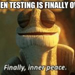It's true | WHEN TESTING IS FINALLY OVER | image tagged in finally inner peace | made w/ Imgflip meme maker