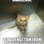 Kill You Cat Meme | ICE BUCKET CHALLENGE  I CHALLENGE TOM FROM TOM AND JERRY , FELIX THE CAT AND SYLVESTER | image tagged in memes,kill you cat | made w/ Imgflip meme maker