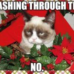Grumpy Cat Mistletoe Meme | DASHING THROUGH THE NO. | image tagged in memes,grumpy cat mistletoe,grumpy cat | made w/ Imgflip meme maker