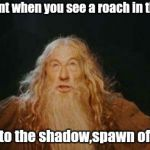 Go back to the shadow,Roach of Mordor!! | That moment when you see a roach in the shower Go back to the shadow,spawn of Mordor! | image tagged in gandalf | made w/ Imgflip meme maker