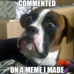 Surprised Dog | SOMEONE JUST COMMENTED ON A MEME I MADE MONTHS AGO. | image tagged in surprise,memes,funny,dogs | made w/ Imgflip meme maker