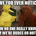 Big Bird And Snuffy Meme | HAVE YOU EVER NOTICED HOW NO ONE REALLY KNOWS IF WE'RE DUDES OR NOT? | image tagged in memes,big bird and snuffy | made w/ Imgflip meme maker