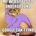 f hipster kitty meme generator imgflip