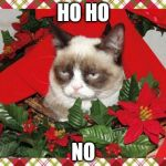Grumpy Cat Mistletoe Meme | HO HO NO | image tagged in memes,grumpy cat mistletoe,grumpy cat | made w/ Imgflip meme maker