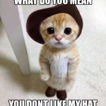 Cute Cat | WHAT DO YOU MEAN YOU DONT LIKE MY HAT | image tagged in cute cat | made w/ Imgflip meme maker