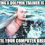 Putin Dolphins | DATING A DOLPHIN TRAINER IS FUN UNTIL YOUR COMPUTER BREAKS | image tagged in putin dolphins | made w/ Imgflip meme maker