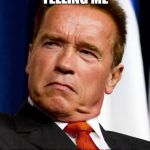 Arnold Schwarzenegger | WAIT SO YOU'RE TELLING ME THAT NOT ALL PEOPLE FROM AUSTRIA SOUND LIKE ARNOLD | image tagged in arnold schwarzenegger | made w/ Imgflip meme maker
