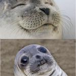 Awkward moment seal meme