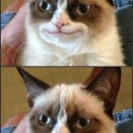 Happy Grumpy cat photoshop meme