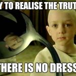 Spoon matrix | TRY TO REALISE THE TRUTH... THERE IS NO DRESS. | image tagged in spoon matrix,blue dress | made w/ Imgflip meme maker