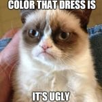 Grumpy Cat Meme | I DON'T CARE WHAT COLOR THAT DRESS IS IT'S UGLY EITHER WAY | image tagged in memes,grumpy cat | made w/ Imgflip meme maker