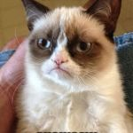 Grumpy Cat Meme | CAN I HAZ CHAINSAW | image tagged in memes,grumpy cat | made w/ Imgflip meme maker