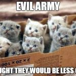 box of cats | EVIL ARMY THOUGHT THEY WOULD BE LESS CUTE | image tagged in box of cats | made w/ Imgflip meme maker