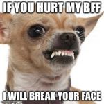 Angry chihuahua  | IF YOU HURT MY BFF I WILL BREAK YOUR FACE | image tagged in angry chihuahua | made w/ Imgflip meme maker