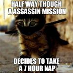 Ninja Cat | HALF WAY THOUGH A ASSASSIN MISSION DECIDES TO TAKE A 7 HOUR NAP | image tagged in ninja cat | made w/ Imgflip meme maker