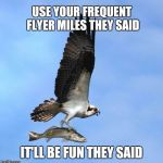 fish | USE YOUR FREQUENT FLYER MILES THEY SAID IT'LL BE FUN THEY SAID | image tagged in fish | made w/ Imgflip meme maker