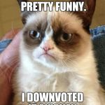 Grumpy Cat Meme | YOUR MEME WAS PRETTY FUNNY. I DOWNVOTED IT ANYWAY. | image tagged in memes,grumpy cat | made w/ Imgflip meme maker