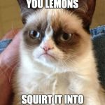 Grumpy Cat Meme | WHEN LIFE GIVES YOU LEMONS SQUIRT IT INTO PEOPLES EYES | image tagged in memes,grumpy cat | made w/ Imgflip meme maker