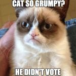Grumpy Cat Meme | WHY IS GRUMPY CAT SO GRUMPY? HE DIDN'T VOTE FOR ROARK | image tagged in memes,grumpy cat | made w/ Imgflip meme maker