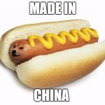 Made in... | MADE IN CHINA | image tagged in doge hot doge | made w/ Imgflip meme maker