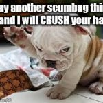 Just Try It | Say another scumbag thing and I will CRUSH your hat. | image tagged in question puppy,scumbag | made w/ Imgflip meme maker