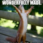 amen squirrel | I PRAISE THEE FOR I AM FEARFULLY AND WONDERFULLY MADE. PSALMS 139:14 | image tagged in amen squirrel | made w/ Imgflip meme maker
