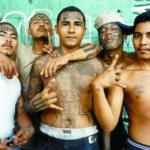 mexican gang members meme