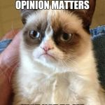Grumpy Cat Meme | OF COURSE YOUR OPINION MATTERS JUST NOT TO ME | image tagged in memes,grumpy cat | made w/ Imgflip meme maker